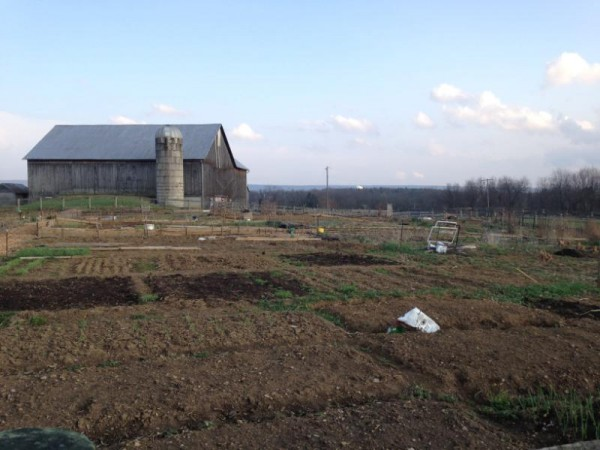 Farmer survey: Untreated/raw manure use on produce farms