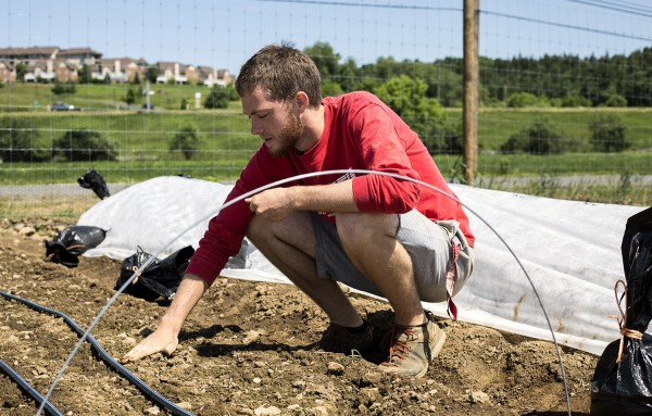 Penn State Student Farm grows awareness of sustainability, local food