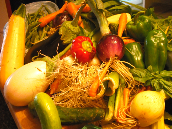 A basket full of vegetables including carrots, peppers, and eggplant.