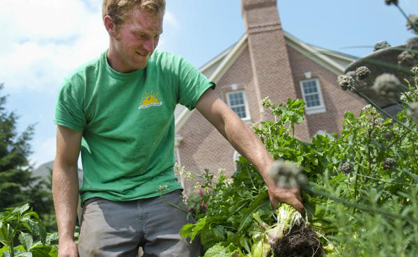 A startup gardening service makes getting fresh vegetables easy