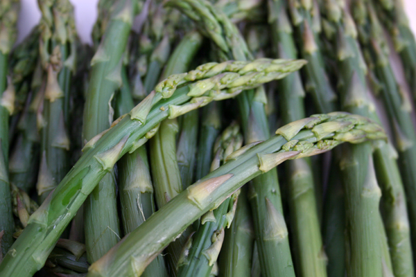 Asparagus Recipe Contest