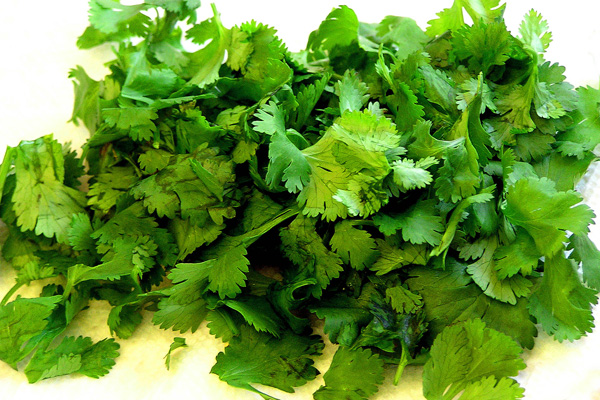 The Great Cilantro Debate