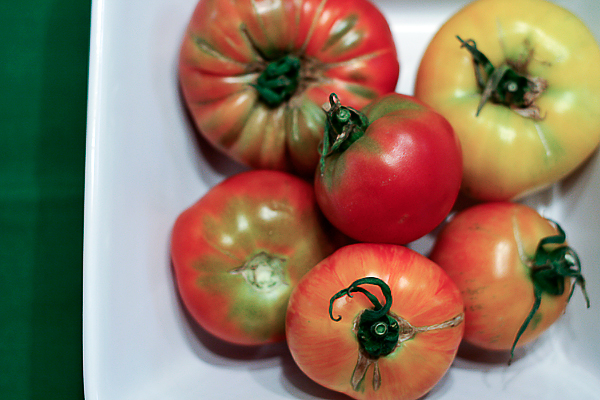 "NPR: How Industrial Farming ""Destroyed"" the Tasty Tomato"