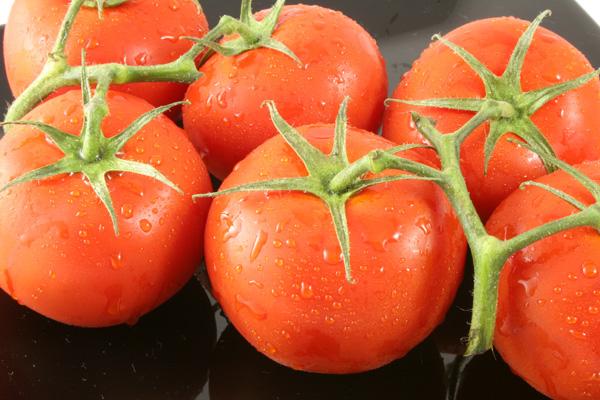 Tomato Avalanche