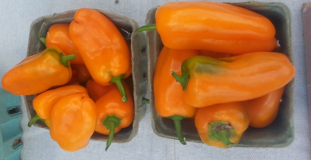 How your favorite peppers get from farm to market is trickier than you think
