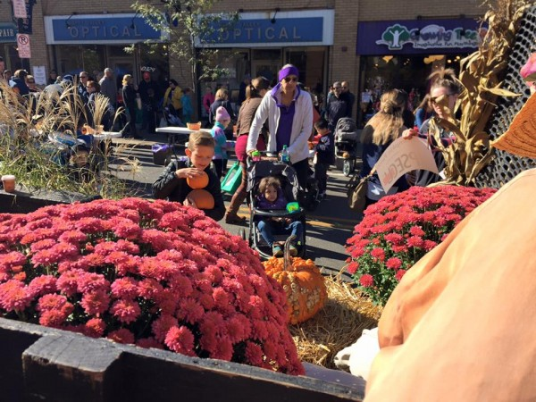 Fall festivals abound this weekend