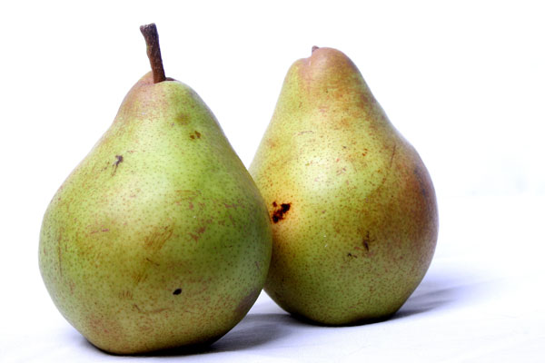 Winner of the Pear Recipe Contest