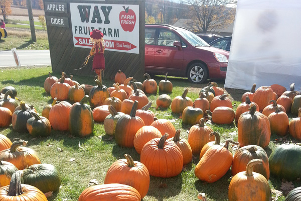 This weekend, get your fill of fall festivals