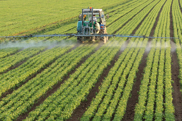 Why Organic? Part 3: Pesticides